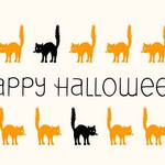 marching cats and Happy Halloween