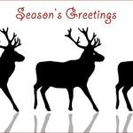 Reindeer in a line with text &#x27;Season&#x27;s Greetings&#x27;