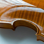 photo of the back of a violin