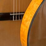 photo of guitar close up of bridge