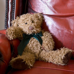 photo of a teddy bear in a red leather chair