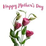 Lisianthks flowers and text 'Happy Mother's Day'
