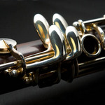 photo of a clarinet close up