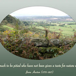 photo of a scene looking out over brambles and valleys, with a quote by Jane Austen about nature